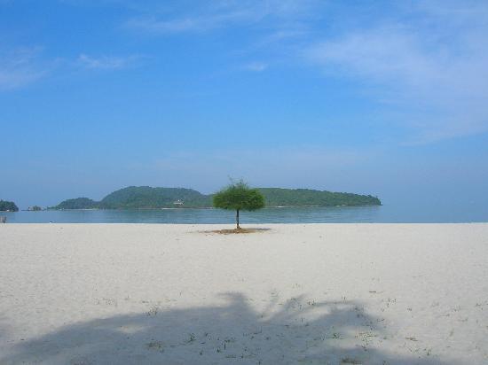 Meritus Pelangi Beach Resort & Spa, Langkawi : la plage
