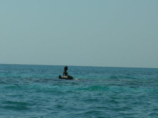 Isla Palma ภาพถ่าย