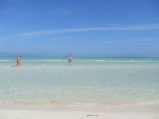 Cayo Guillermo Picture
