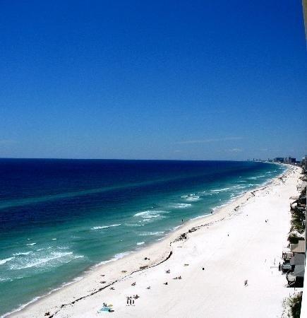 K Tori's Panama City Beach ... . Andrew State Park - Picture of Panama City Beach, Florida Panhandle
