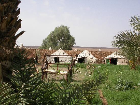 Les jardins de Tazzarine: Le campement des jardins de tazzarine
