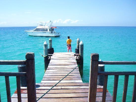 Pulchra: ホテルのビーチにある桟橋で釣りをした。