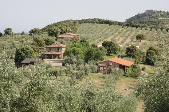 Country House Montali: general view