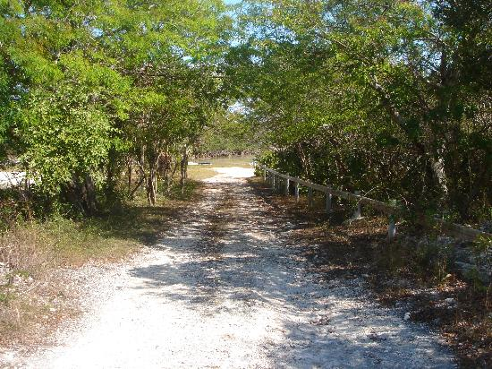 Exuma Vacation Cottages: The path way to the dock