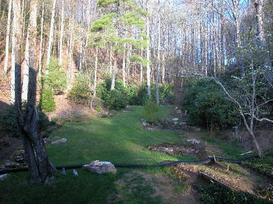 The Chalet Inn Bed & Breakfast: Forestview room- view of back property in April without leaves on trees