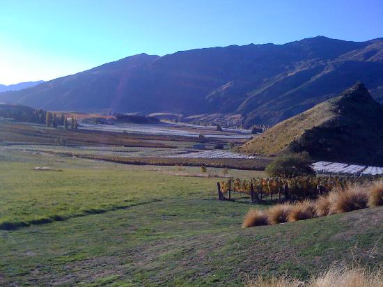 Mt Rosa Lodge: view down the Gibbston Valley from my patio