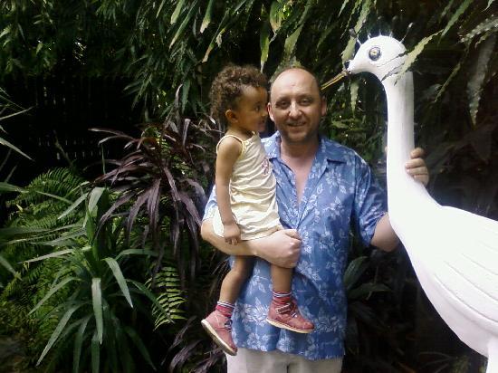 African Garden Lodge: Espaces Vert tropical