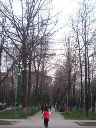 Bishkek, Kyrgyzstan: a walk through the park (and a sight of a little jaywalker)