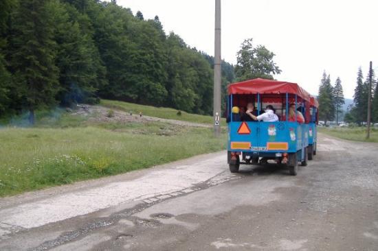 Sinaia, Rumania: Mountains trip: A mini train