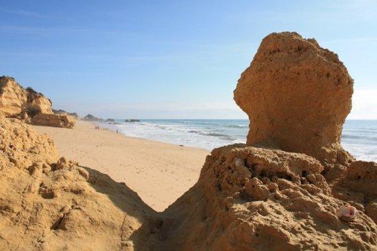 Playa de Falésia: A