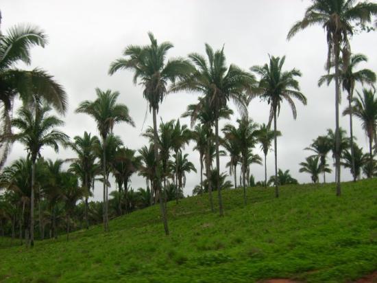 São Luís, MA: Maranhao