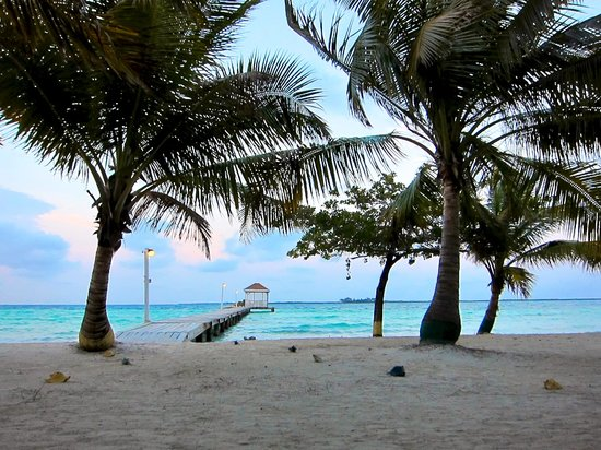 Coco Plum Cay, Belice: View from one of the beach hammocks