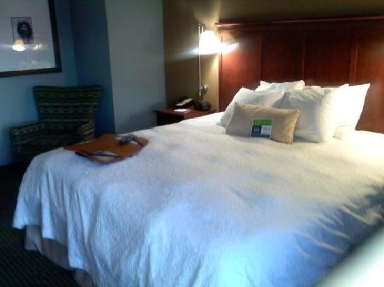 Hampton Inn Traverse City: View of Bed