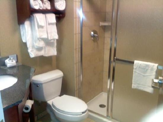 Hampton Inn Traverse City: View of Bathroom