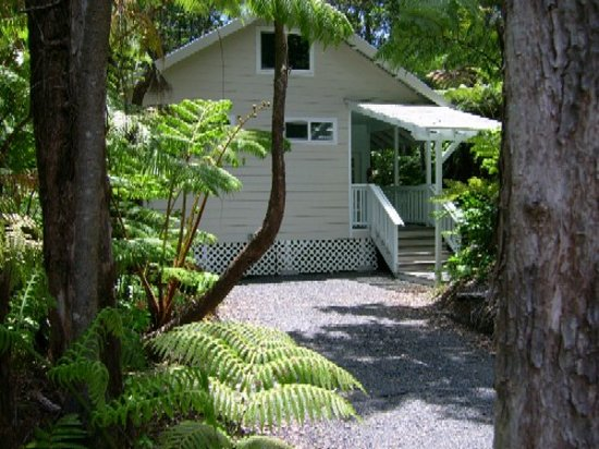 Volcano Vacation Homes (Chalet Kilauea Collection): Rainforest Cottage