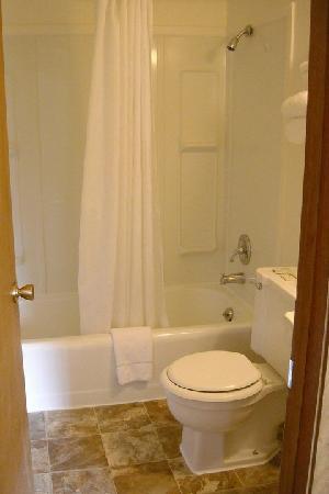 The Country Inn: bathroom
