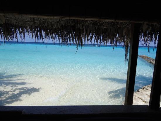 Makunudu Island: immersi nella natura...