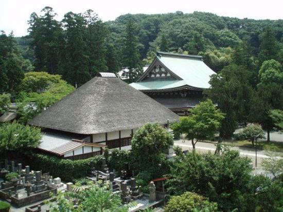 @Kamakura, Kanagawa, Japan