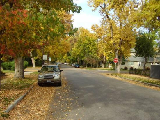Boise, ID: fall
