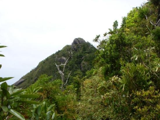Mt. Mocchomudake Photo