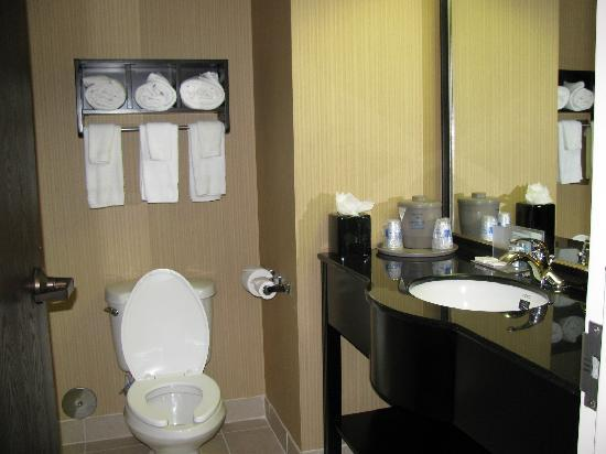 Hampton Inn Plano/North Dallas: Small but nice bathroom with lots of towels