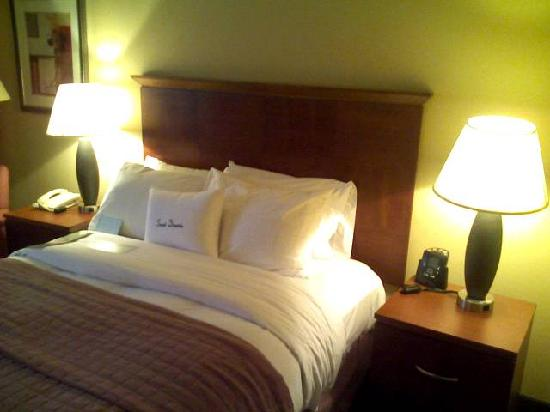 Doubletree Hotel Boston/Westborough: Queen Bed