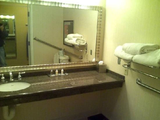 Doubletree Hotel Boston/Westborough: Bathroom