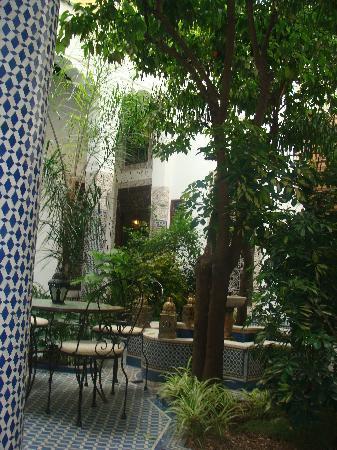 Riad Louna: encore le patio