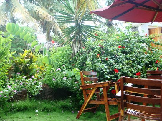 Hotel San Vicente Galapagos: The Courtyard