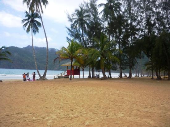 Trinidad Picture