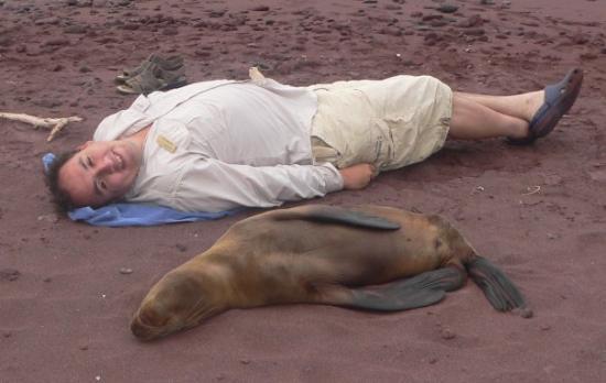 Fernandina, Ecuador: sleeping with sea lions