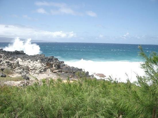 Napili Shores Maui by Outrigger: Coastal Trail near Outrigger Napili Shores