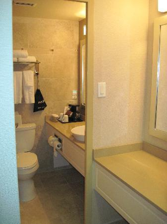 Hamilton Plaza Hotel and Conference Center: small bathroom but extra counter space