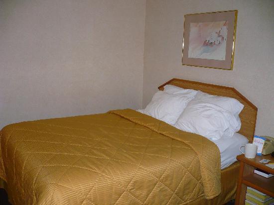 Comfort Inn Zion: 2 queen beds in room