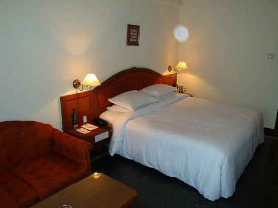 Hotel Sandesh The Prince: Chambre