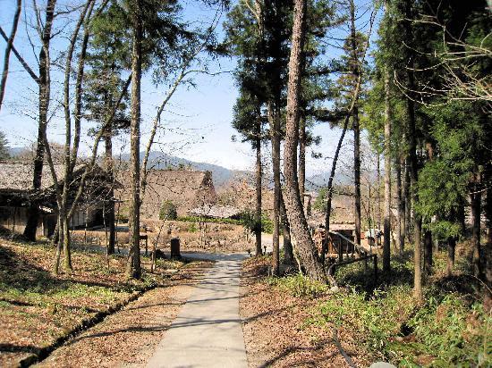 Takayama, Japan: Beautiful wooded grounds.