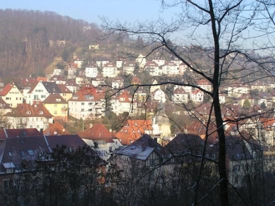 สตุตการ์ต, เยอรมนี: Stuttgart A hill of houses in Stuttgart
