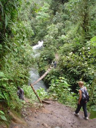 Mindo, الإكوادور: Mindo