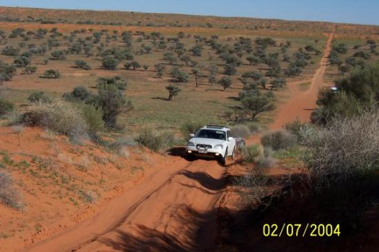 Birdsville, ออสเตรเลีย: David's H6 scrambling up one of the sand dunes.