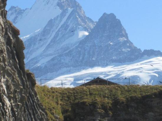 Grindelwald, İsviçre: Views from atop First