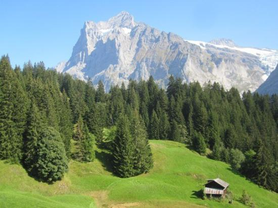 Grindelwald, Suiza: Firstbahn (cable car) and views from