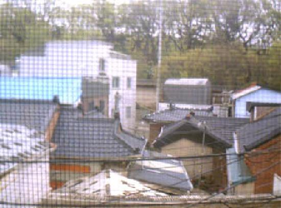 Yim's House: window view 2