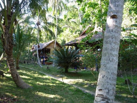 Nuts Huts Resort: Nuts Huts grounds