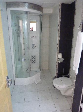 Ikbal Deluxe Hotel Istanbul : シャワーは使い方が難しい。