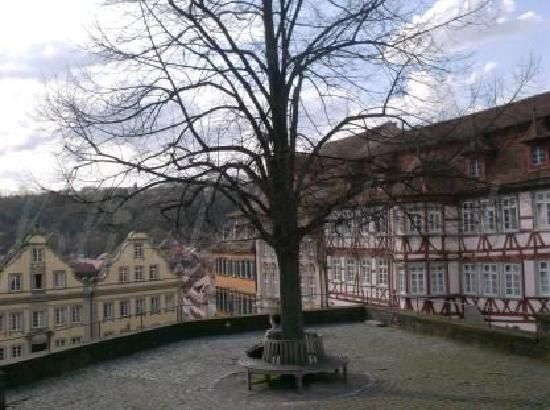 Schwäbisch Hall, เยอรมนี: view to marketplace from the 59 steps high St. Michael church