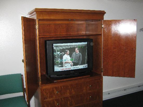 Watkins Glen Villager Motel: nice tv; no dvd player, but we had one for kid