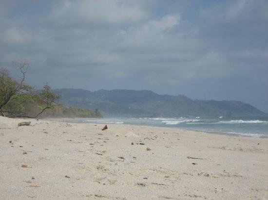 Mariposa Vacation Homes: beach behind casas pura vida - DAY