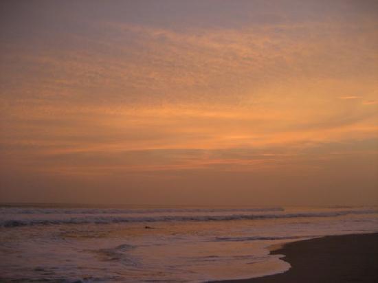 Mariposa Vacation Homes: beach behind casas pura vida - NIGHT