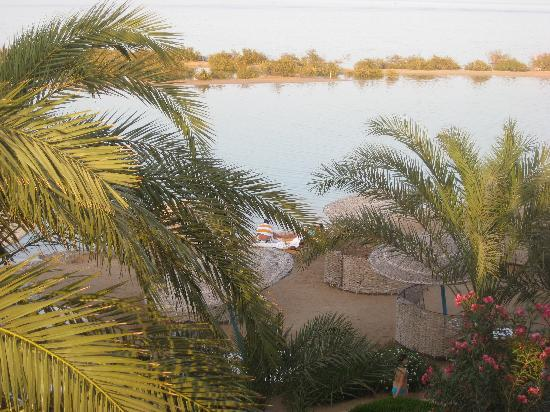 Sheraton Miramar Resort El Gouna: View from our room
