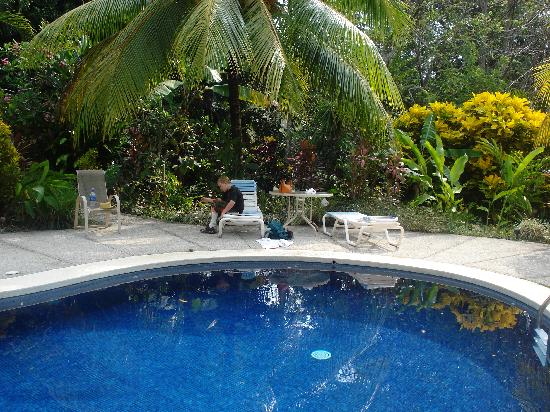 Star Mountain Jungle Lodge: The pool is sublime.